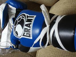 Grant Pro Fight Gloves